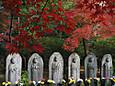 「東漸寺の秋2」